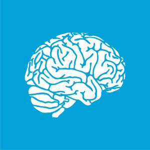 Traumatic Brain Injury 19%