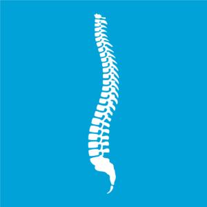 Spinal Cord Injury 20%